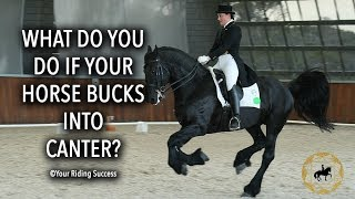 WHAT DO YOU DO IF YOUR HORSE BUCKS IN TO CANTER?   Dressage Mastery TV Episode 207