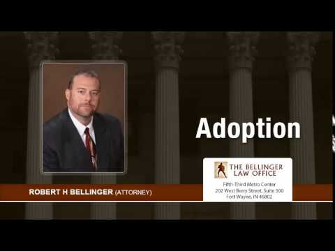 What Is The Most Common Type Of Adoption In Fort Wayne, Indiana? | (260) 428-2214