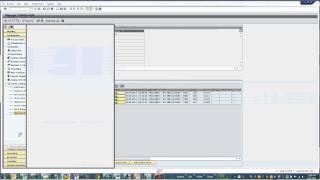 SAP BW 7.3 SP9 مع Sybase الذكاء NLS Demo