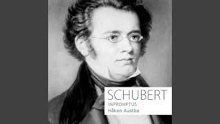 Impromptu in C Minor, D. 899 (Op. 90) , No. 1: Allegro molto moderato