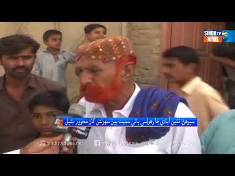 Sewan  - Package - Sindh TV News