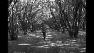 Mildred- a horror movie I made