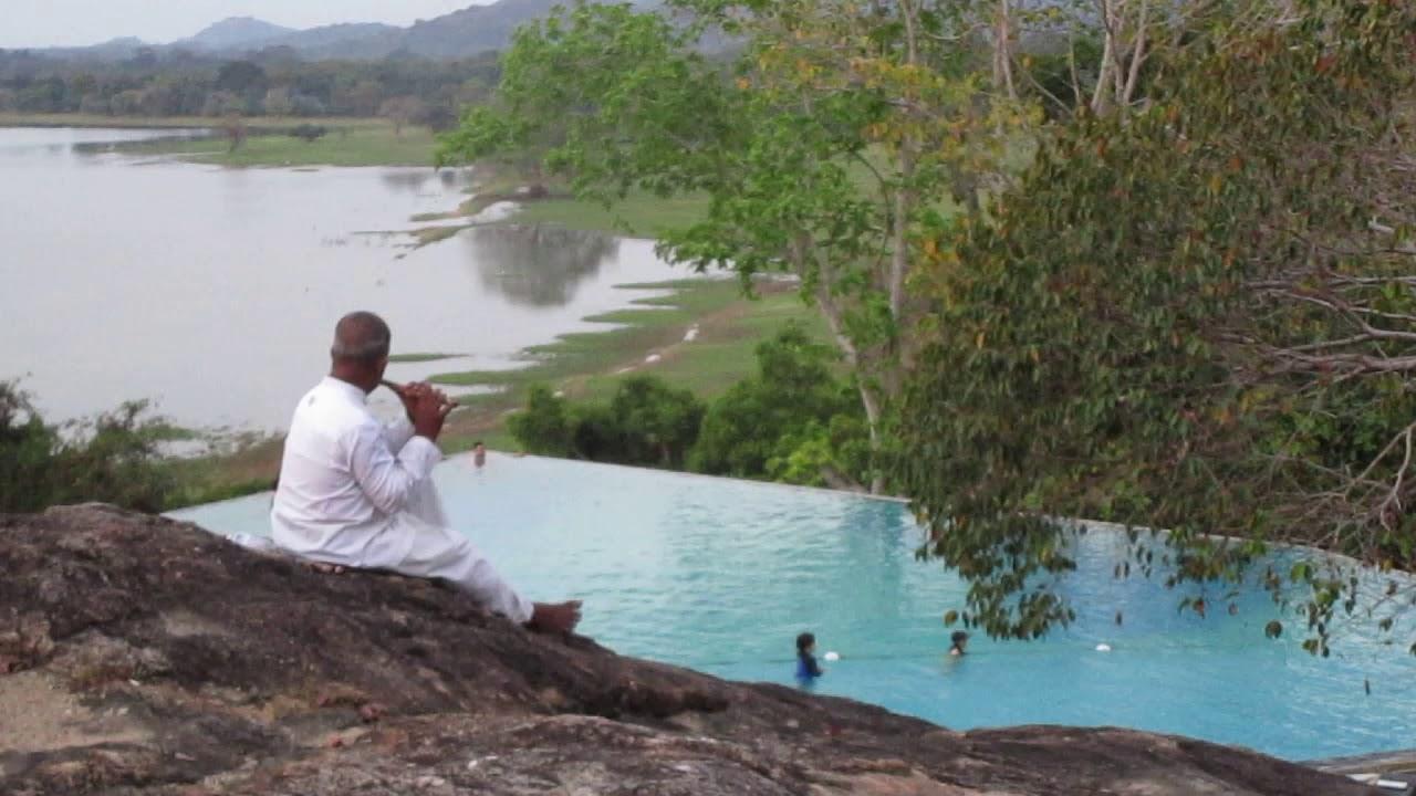 The Flute Player Heritance Kandalama Resort Sri Lanka