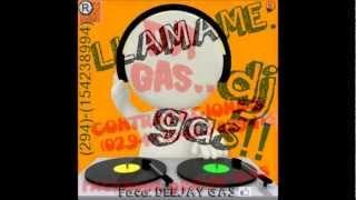 Te pintaron pajaritos en el aire. Remix 2013 DJ gas!