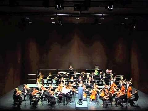 J. Sibelius Violin Concerto - Adagio di Molto