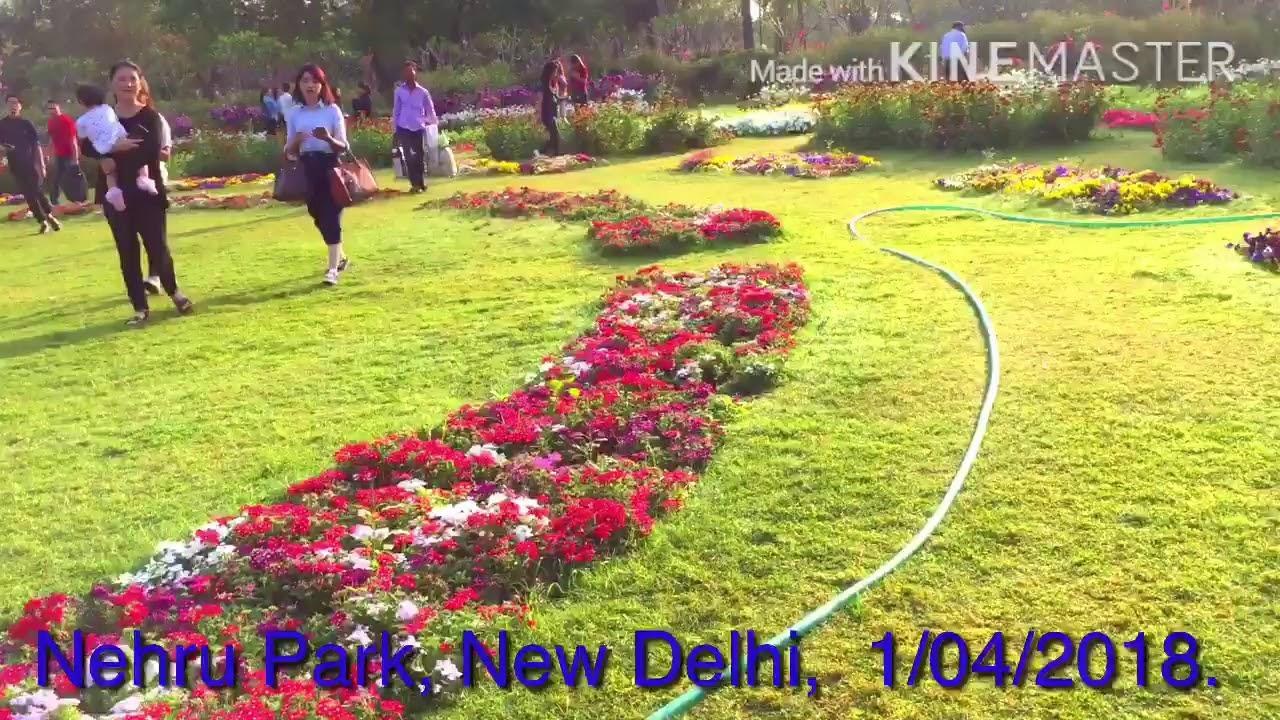 Nehru garden delhi garden ftempo - King soopers elitch gardens tickets ...