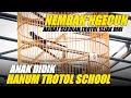 Keuntungan Sekolah Murai Anak Didik Hanum Trotol School  Mp3 - Mp4 Download
