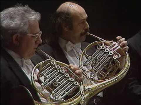 Brahms Piano Concerto 1 Op.15 & 2 Op.83 Bruno Leonardo Gelber