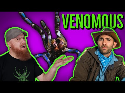 VENOMOUS BITES & STINGS - What To Do If YOU'RE Bitten w/ Coyote Peterson