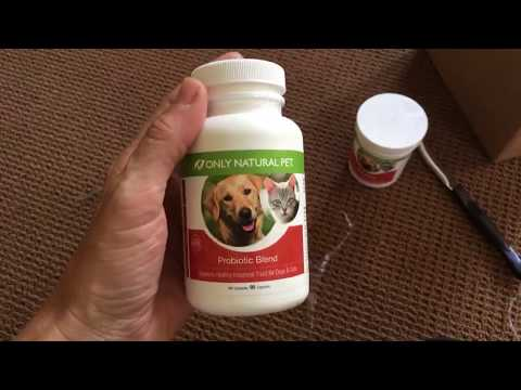 Only Natural Pet Products Probiotics, Digestive Enzymes And Antioxidants - Floppycats