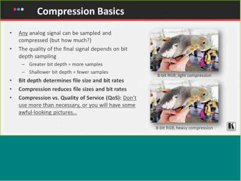 Basics of Video Compression and Streaming with Pete Putman