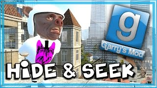 Garry's Mod Bird Mod! - Gmod Hide and Seek Funny Moments - Flying, Elevator of Doom!