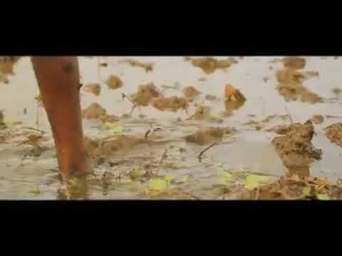 #Alaporan Tamilan  mersal   fan made song   Vijay   Ar Rahman