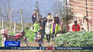 Spring Festival means a personal journey home for many Chinese