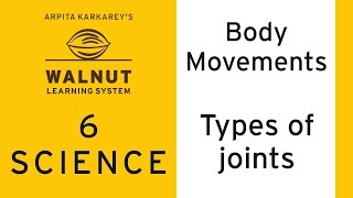 6 Science - Body movements - Types of joints