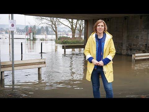 Hochwasser am Rhein (06.01.2018)