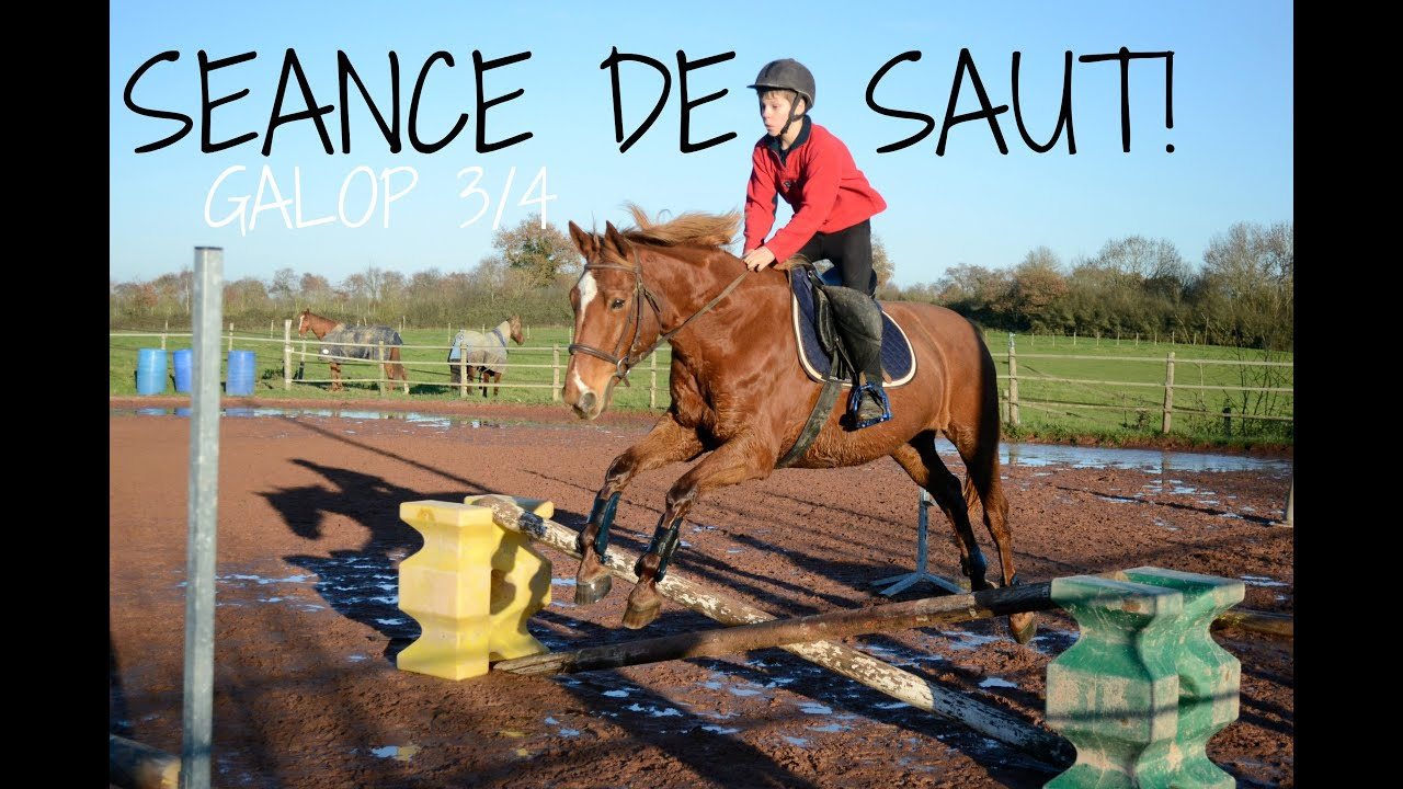 Do cour saut d 39 obstacle galop 3 4 saut de puce youtube - Frison saut d obstacle ...