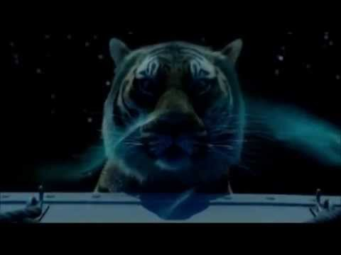 Download Life Of Pi - Most Beautiful Scene
