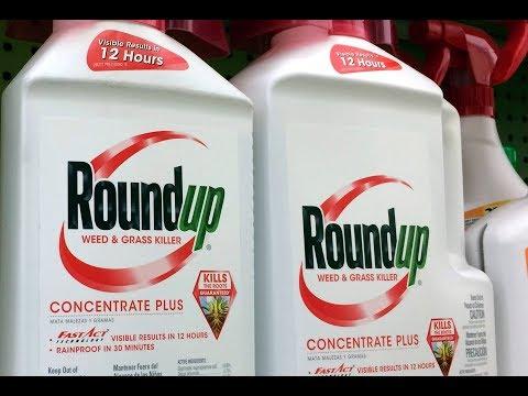 GLYPHOSAT-PROZESS: Bayer/Monsanto erleidet empfindliche Schlappe
