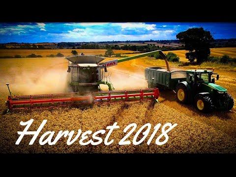 Claas Lexion 780 TT Big Combine Wheat Harvest 2018