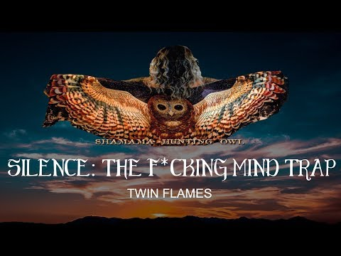 SILENCE: THE F*CKING MIND TRAP TWIN FLAMES