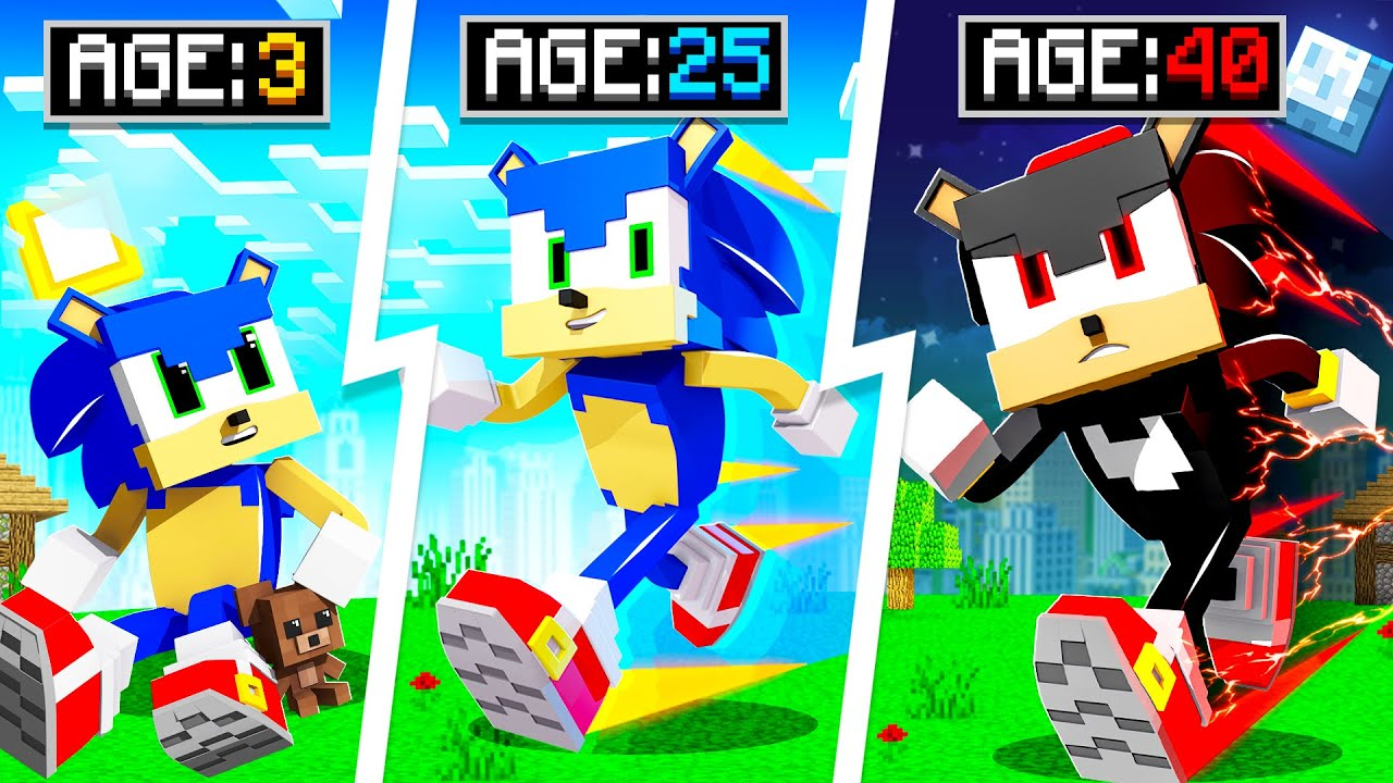 LIFE OF SONIC IN MINECRAFT!
