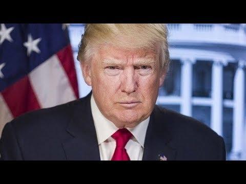 Трамп про лесные пожары в России. Дональд Трамп прокомментировал разговор с Владимиром Путиным.