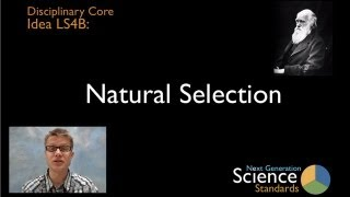 LS4B - Natural Selection