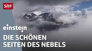 Wozu ist eigentlich Nebel gut? - Einstein vom 12.11.2015