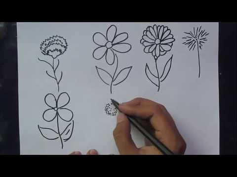 How to draw different types of flowers