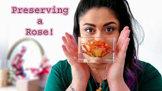 How To Preserve a Full Rose in Resin!