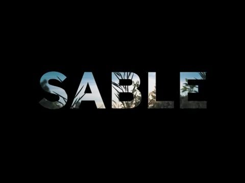 The Sable By Zeal Optics