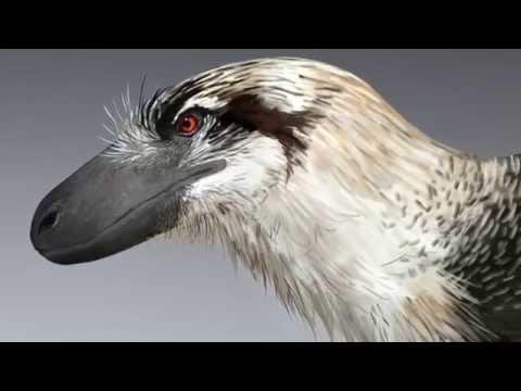 Paleo Profile - Dakotaraptor