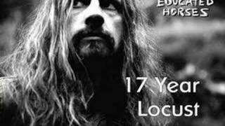 Rob Zombie - 17 Year Locust