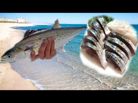Catch and Cook : Spanish Mackerel - Sashimi (RAW) & Grilled w/ Cajun Lime