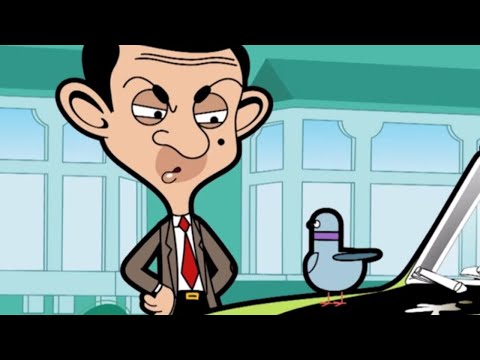 A Pigeon | Funny Episodes | Mr Bean Cartoon World