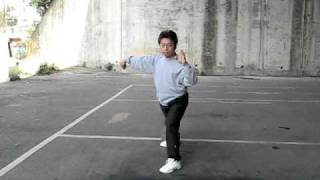 Yang style Tai Chi 108 forms (nature flow) 楊氏太極 108式 (自然勁)