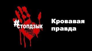 Кровавая правда о Елене Дзык. Информация из первых уст.  #СТОПДЗЫК