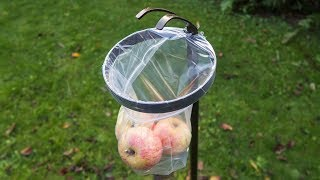 How to make a fruit picker tool for apple scrumping