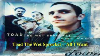 Toad The Wet Sprocket All I Want