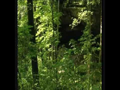BANKHEAD FOREST ALABAMA'S TREASURE 90 MIN
