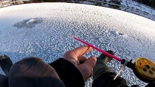 Рыбалка на льду на речке
