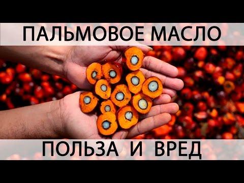 Как принимать масло черного тмина: польза и вред