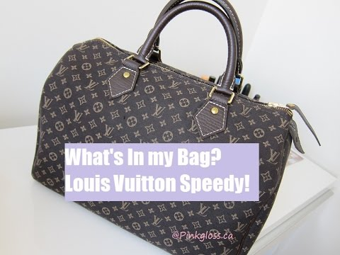 louis vuitton what s in my bag mini lin speedy review youtube