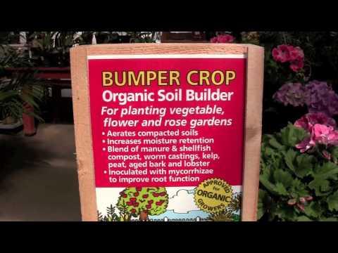 Hadley Garden Center Employee Julia Ozog Loves Bumper Crop