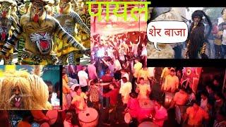 शेर बाजा Payal dhumal GONDIA  तबाही शेर धुन और डांस 9960096024