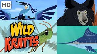 Wild Kratts 🐻🐟 New Creature Adventures! (Part 3) 🦗 | Kids Videos