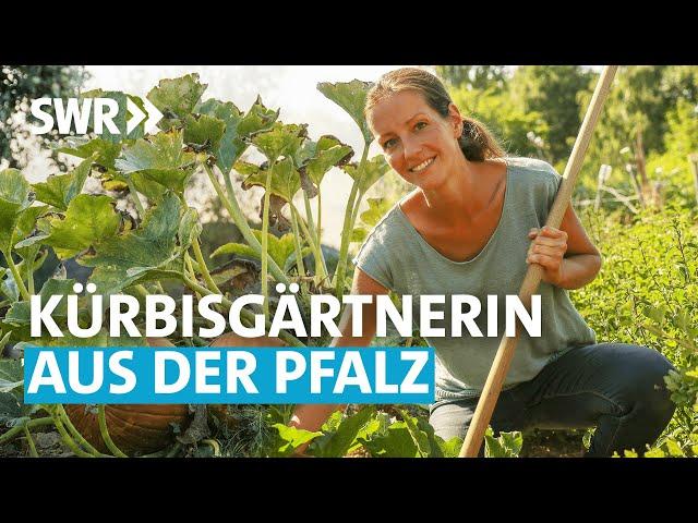Die Kürbis-Gärtnerin (1/6) | Mein leckerer Garten