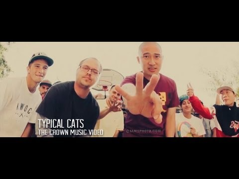 TYPICAL CATS - The Crown | Official Music Video