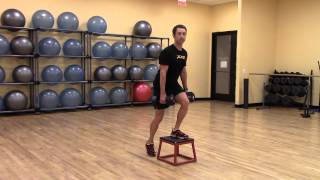 Dumbell Box Step Up : Strength
